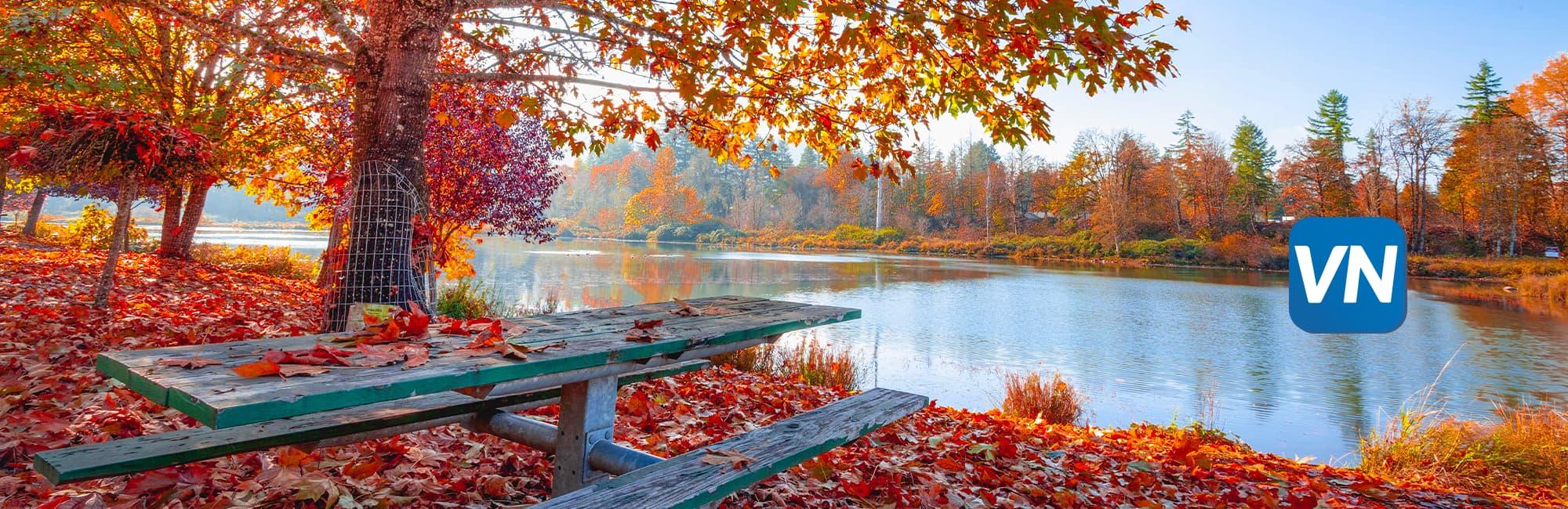 6 ways to enjoy fall!